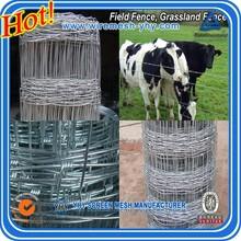 Venta de la fábrica galvanizado en caliente agricola esgrima para ganadería