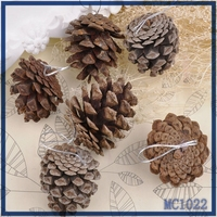 2015 christmas tree ornament factory price high quality hot sale decorations for christmas tree brown pine nut