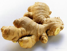 2014 New crop of fresh ginger in China , professional suppliers, exporter