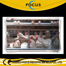 poultry good quality A or H type cage rearing equipment with full/semi automatic complete system for chicken duck farm house