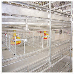 large capacity chicken wire animal cage for birds breeding farm