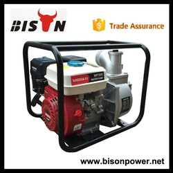 BISON(CHINA) 1 Year Warranty Hot Sale Water Pump Price India