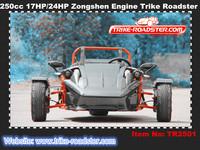 3 wheel quad atv bike ztr roadster with 250cc zongshen engine