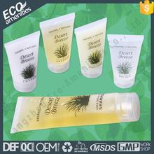Manufacturer European American Design and style plastic travel kit is shower gel