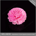 flor rosa sola