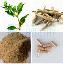 100% natural withanolides extract 5:1 10:1 20:1 pure extract powder