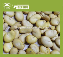 iqf broad beans green skin Peeled broad beans Yunnan broad bean