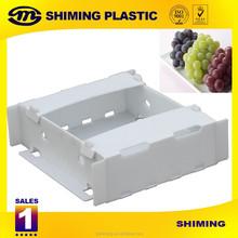 Plastic Correx Archive Box/Collapsible Corrugated PP Box