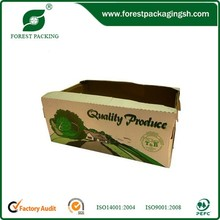 Lettuce Vegetable Packing Chinese Supplier