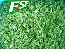 Iqf narural green iqf frozen chopped spinach