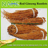 100% fresh high quality Dried Korean red ginseng root