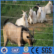 Grassland Wire Fence Panels Hot sale(Shunxing Company)