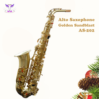 Wind instruments saxophone for kids