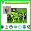 Pain-Relieving Pure Atropine Belladonna Fruit Extract
