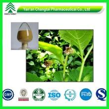 Pain-Relieving Pure Atropine Belladonna Fruit Extract