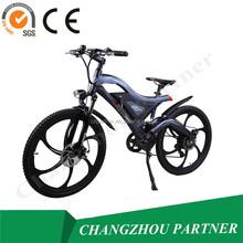 new style e bike( PNT-TDE-05)