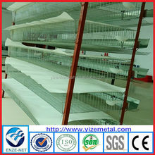 alibaba china supplier cage for quail hens/automatic quail cage/cage for quail prices