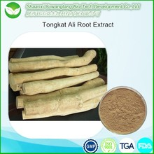 Hot selling Tongkat Ali Root Extract, natural herbal medicine for long time sex