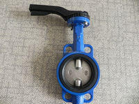 wafer type cast iron butterfly valve with double shaft PN16
