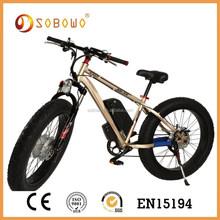 Double battery e mountain bike