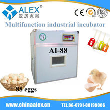 Automatic control water bath incubator poultry grillers group ostrich egg art