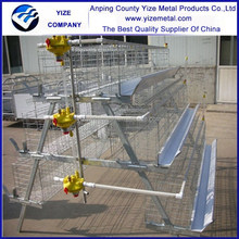 Alibaba China factory hot sales chicken breeding cage with hot dipped galvanized auto water system