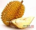 manufacture lowest price supply high quality cat nut extract(P)