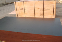 plywood manufacture supply film faced plywood for Russian market