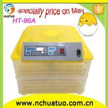 simple operation cockatiel egg incubator hot sale
