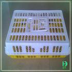 Plástico caixa de volume de negócios, Gaiola de transporte para aves
