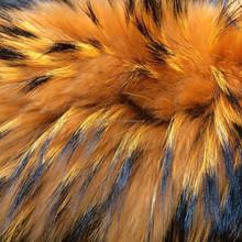 fur garment used raccoon fur