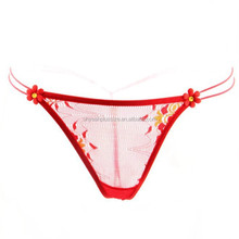 Hot red mesh design wholesale price sexy girl transparent panty girls pics