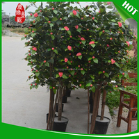 Professional artificial pear trees