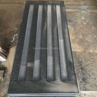 Granite Road Blind Paving Stone, Polished black granite tiles from China