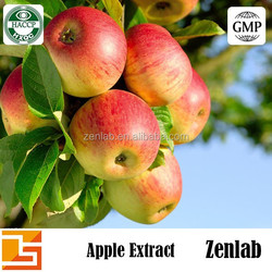 apple extract with apple Phloretin powder for skin whitening