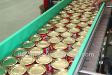 tomato puree,tomato ketchup,tomato pulp processing plant