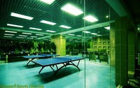 Indoor Sports Vinyl / Plastic Flooring for Table tennis / Basketball Court