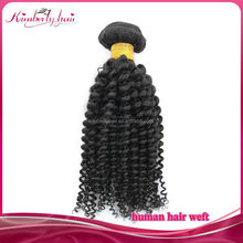 unprocessed virgin remy mongolian human hair fashion kinky curly style braiding no attachements for black woman