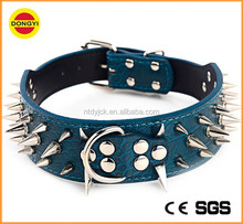 colorful western pitbull spiked studded dog collars in genuine leather