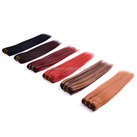 Hight LIGHT COLOR 5A QUALITY STRAIGHT BRAZILIAN crochet hair extension