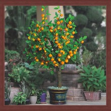 artificial orange fruit bonsai plant garden deco LED tree light artificial flower & fruit bonsai for festival lighting