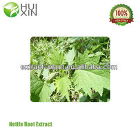 sale wild natural nettle root p.e
