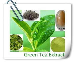 2015 Hot-seling Natural Green Tea Extract, Green Tea Extract Powder,Tea Polyphenol/EGCG
