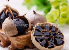 black garlic supplier