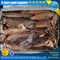 2015 new stock argentina illex squid wholesale frozen squid bait from china with good quality