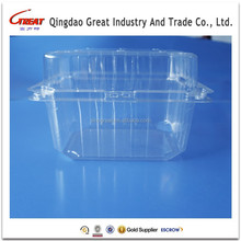 Fruit and Vegetable Container, Fruit and Vegetable Box, Fruit and Vegetable Packaging