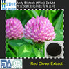 Red Clover Flower Extract Isoflavones 60% Pure Red Clover Powder