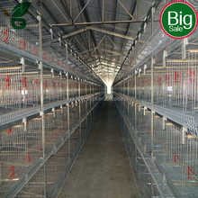 H type multi-tier galvanized layer chicken cage