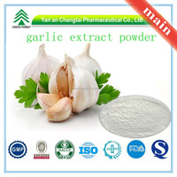 Hot Sale GMP Certificate 100% Pure Natural Garlic Extract powder