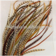 latest thin long feather hair extensions ,nature grizzly feather